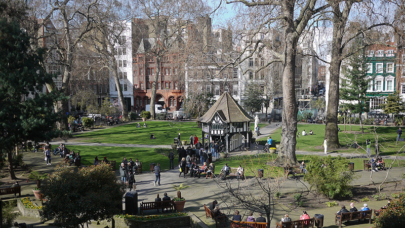 LUNGS: London's Greenspaces | Tracey Fahy